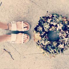 coach sandals+succulent wreath