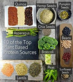 10  top plant based sources for protein.