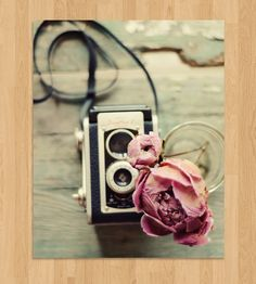 Peony & Vintage Camera Photo Art in Art by Dull Blue Light on Scoutmob Shoppe. A charming photo of a vintage camera and dried peony printed on professional photo paper with a lustre finish.