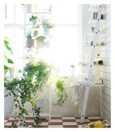 Haute Houseplants