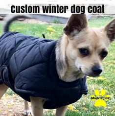 custom dog coat Small Dog Coats, Small Dogs, Stay Warm, Warm And Cozy, Dog Winter Coat, Winter Quilts, Mini Dachshund, Little Dogs, Life Is Good