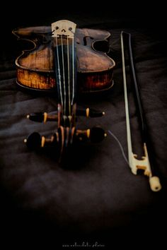 This is my friends #violin, it's from 1600s