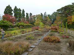 """""""Oyakuen""""(Giardino), Aizu-Wakamatsu Fukushima Japan, Novembre"""