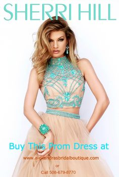 Looking for the perfect Prom Dress for the 2015 Prom Season. We carry all of today's top designers. Visit us online at www.alexandrasbridalboutique.com to find out more information. Plus we ship all over the United States.