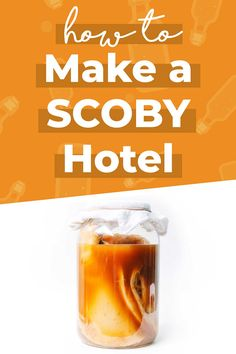 Everything you need to know about making and maintaining your five star kombucha SCOBY hotel (and why you NEED one)! #kombucha #fermentation #homebrewing #probiotics