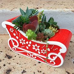 It's lovely weather for a sleigh ride together 🎶🎅🏼 via @anamarsh ⠀ Follow us @succulentcity & tag your succulent collection #succulentcity to be featured!!#succulents #succulentarrangement #succulent #succulove #succulentgarden #succulentaddict #succulentsofinstagram