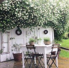 Lovely rustic outdoor dining area