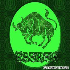 Taurus picture