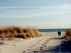 the hamptons >> spent many a time there at my aunts place....the Southampton beach has a very special place in my heart!