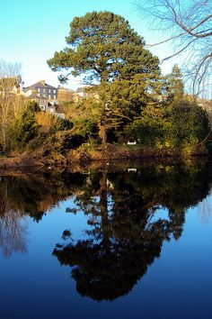 Fitzgerald's Park in Cork City, Ireland is a gorgeous must-see situated right outside the city center!