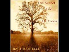 1 Mist over Mulholland 5:03    2 Centennial Leaves 4:43    3 Britton Willow 5:17    4 Fairies Under the Lemon Tree 5:17    5 An Ap...