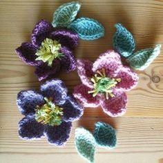 """Crochet hellebore flowers for my winter wreath #attic24"" Photo taken by @attic24 on Instagram, pinned via the InstaPin iOS App! http://www.instapinapp.com (03/03/2015)"