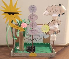 Photosynthesis 7th grade project