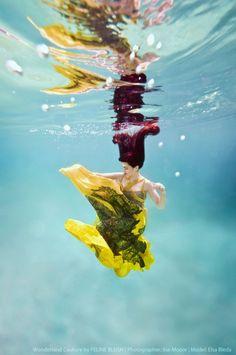 Wonderland Couture ~ beautiful photoshoot from Feline Blush!
