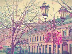 original vintage tumblr photography