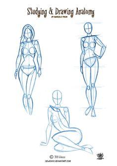 Anatomy Drawing for Artists by http://celaoxxx.deviantart.com on /deviantart/
