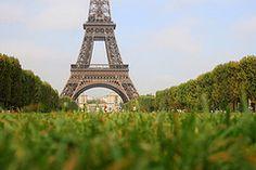 Y hacer otro picnic con mis amigos a los pies de la torre Eiffel