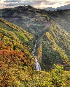 Salto del Buey, Colombia Fauna, River, Explore, Mountains, World, Bella, Nature, Photography, Outdoor