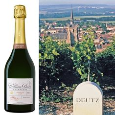 Single-vineyard is the new vanguard in champagne, with deliciously complicated cuvées from trailblazing terroiriste growers taking the wine world by storm. Champagne Deutz, Left, The Rock, Vineyard, Luxury, Style, Big Houses, Bubbles, Swag