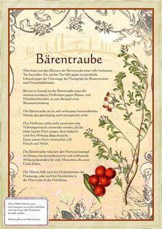 Bärentraube http://www.kraeuter-verzeichnis.de/