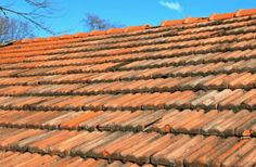 Roof Maintenance And Repair Tips For All - Jack's Roofing Tips and Guide Roofing Companies, Roofing Services, Roofing Contractors, Roofing Options, California Activities, Affordable Roofing, Asphalt Roof Shingles, Roofing Shingles, Ice Dams