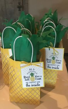 Be a Pineapple Goody Bags
