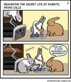 Is this why we get so many refrigerator phone calls?