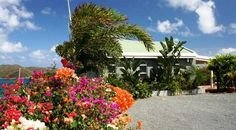 Villa vacation rental in Coral Bay from VRBO.com! #vacation #rental #travel #vrbo