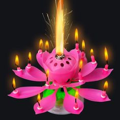 Romantic Musical Lotus Flower Rotating Happy Birthday Party Gift Candle Lights E Romantic Candles, Pink Candles, Small Candles, Decorative Candles, Singing Happy Birthday, Happy Birthday Parties, Birthday Party Decorations, Birthday Ideas, Free Birthday