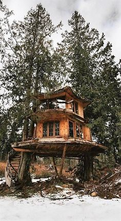 Let me show you survival bofore the SHTF! Woodland House, Forest House, Future House, My House, Building A Treehouse, Treehouse Ideas, Cool Tree Houses, Cabin Tent, Little Cabin