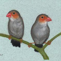 Dessin pastel oiseaux format a5 non encadré