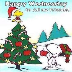 Peanuts Christmas, Christmas Cartoons, Charlie Brown Christmas, Christmas Time, Merry Christmas, Christmas Christmas, Christmas Card Messages, Christmas Cards, Christmas Ornaments