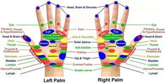 Reflexology chart for hands. Photo from everythingessential.me