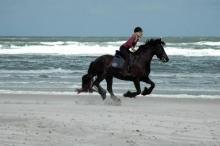 Paardrijden op het strand van Terschelling