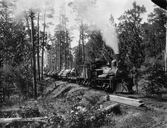 logging Trains | Memories of prohibition; as were told to me by a couple of Great Old ...