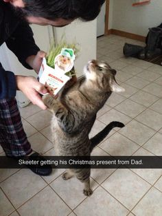 The Cat looks really interested in what his Dad is saying - so cute ~