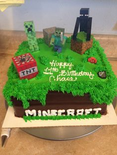 Joseph wants a minecraft birthday party. He likes this cake good thing I have until January.