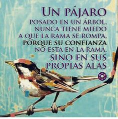 Images and videos of frases celebres Positive Thoughts, Positive Quotes, Motivational Quotes, Inspirational Quotes, Daily Thoughts, Positive Messages, Favorite Quotes, Best Quotes, Life Quotes