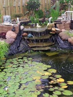 Bog filter with waterfalls ponds and waterfalls for Bog filter waterfall
