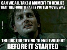 As a Whovian who enjoyed reading and watching Harry Potter, who doesn't actually dislike Twilight. I find this way funnier than I should :P Hee hee.