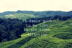 it feels good to be lost in the right direction quote. journey.