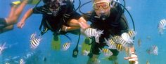 You don't need to do this anymore to get a real underwater experience! Friend of Lauren