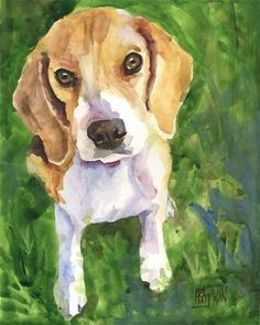 Beagles are the cutest... <3 Trudy