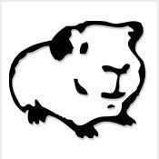 guinea pig tattoo | tattoo. | Pinterest | Guinea pigs, Pig tattoos ...