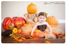 baby photography halloween mini session tutu