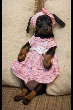 Cute Baby!