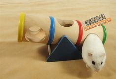 homemade dwarf hamster toys - Google Search