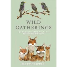 Matt Sewell. Wild life getting quirky and poetic.
