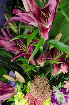 In the cooler now, the Dazzle bouquet! Gorgeous colours combined to create a bouquet that are sure to dazzle! Calgary, Bouquet, Colours, Cool Stuff, Create, Flowers, Plants, Bouquet Of Flowers, Bouquets