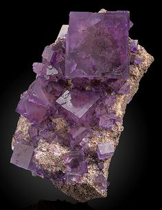 Fluorite cubes with Sphalerite on drusy covered matrix ~  Denton Mine, Harris Creek Sub-District, Hardin Co., Illinois